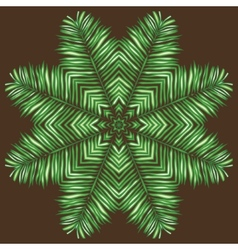Circular pattern of palm leaves on a brown vector image vector image