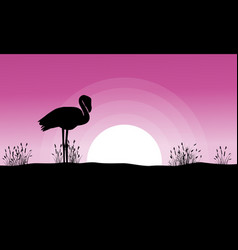 Flamingo at sunset landscape silhouettes vector