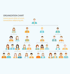 Organizational chart corporate business hierarchy vector