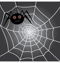 Spider in a cobweb vector