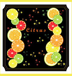The set citrus vector