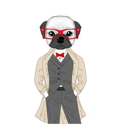 brutal french bulldog in elegant classic suit with vector image vector image