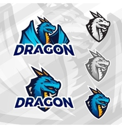Creative dragon logo template sport mascot design vector