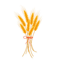 wheat icon flat style isolated on white vector image vector image