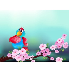 A parrot at the branch of a tree with pink flowers vector image