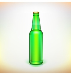 Glass beer green bottle product packing vector