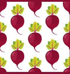 beetroot seamless pattern vegetarian food vector image vector image