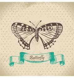 Butterfly hand drawn vector image