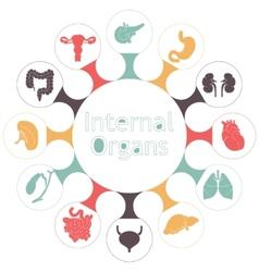 Icons of internal human organs vector