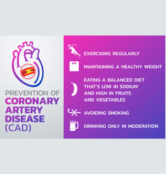 Prevention of coronary artery disease cad icon vector