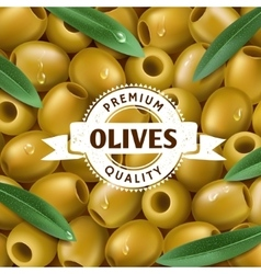 Realistic green olives background with a leafs vector