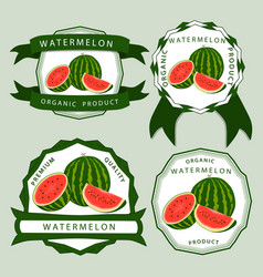 the red watermelon vector image vector image