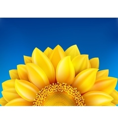 Sunflower and blue sky background eps 10 vector