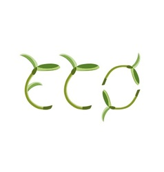 Label eco sprout symbol vector image