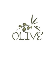 branch of olives design template vector image