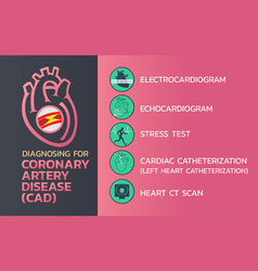 Diagnosing of coronary artery disease cad icon vector
