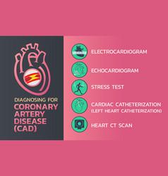 diagnosing of coronary artery disease cad icon vector image vector image