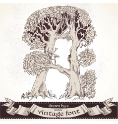 Fable forest hand drawn by a vintage font - A vector image vector image