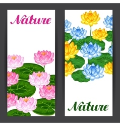 Natural banners with lotus flowers and leaves vector image vector image