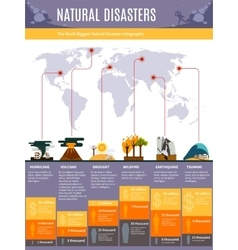 Natural disasters infographics vector