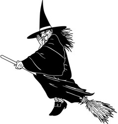 Tg00076 witch on broom vector