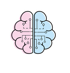 anatomy brain with circuits digital connection vector image