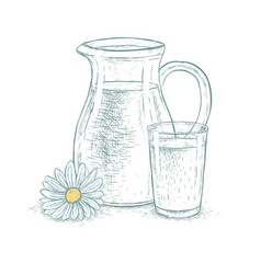 Hand drawn milk jug and glass of milk with daisy vector