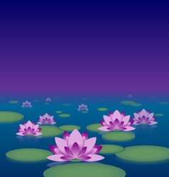 Lotus pond at night vector image vector image