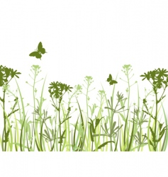 Wild flowers and butterflies vector
