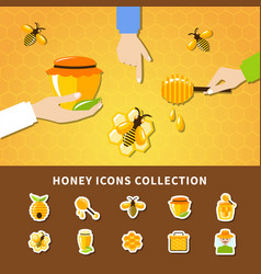 honey and hands composition vector image
