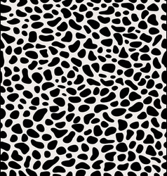 skin of leopard vector image vector image