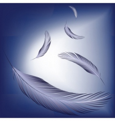 feathers in the wind vector image