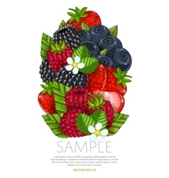 Fresh berries mix isolated vector