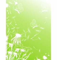 Background with dandelion and butterflies vector