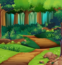 Forest scene with dirt trail vector
