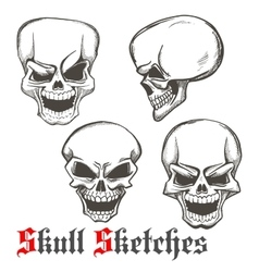 Laughing skulls sketches for tattoo design vector