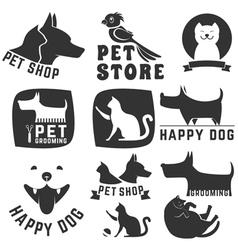 pet store vector image
