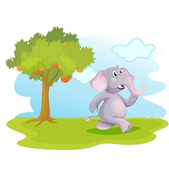 An elephant running near the orange tree vector image vector image