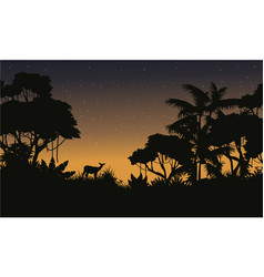collection stock of jungle silhouette style vector image vector image