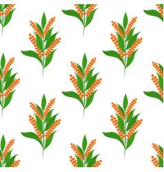 quinoa seamless patterncartoon flat style vector image vector image