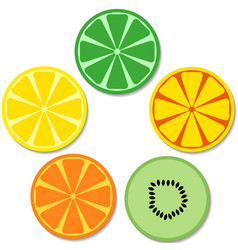 set of flat fruits and citruses vector image