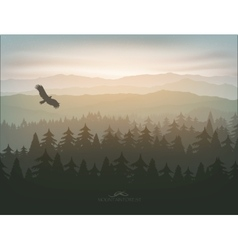 Mountain forest in fog and sunrise vector