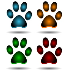 Four paws vector image