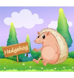 A hedgehog beside a wooden signage vector image vector image