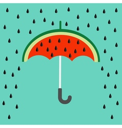 Big watermelon slice cut with seed umbrella and vector