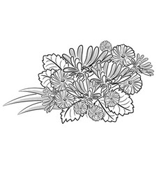 Monochrome black and white flowers vector