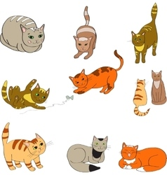 A set with the image colored cats vector