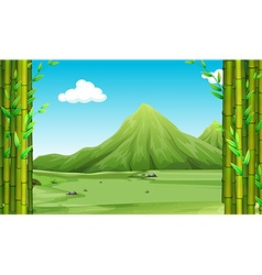 Nature scene with bamboo and hills vector