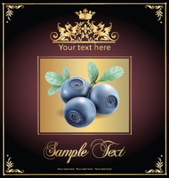 Blueberries vector