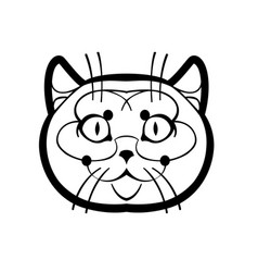 british shorthair cute vector image